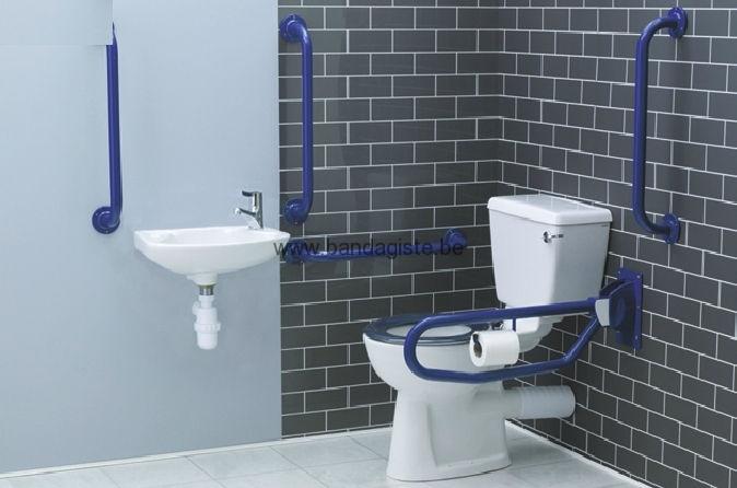 am nagement toilette pour personne pr sentant un handicap toilette sur mesure. Black Bedroom Furniture Sets. Home Design Ideas